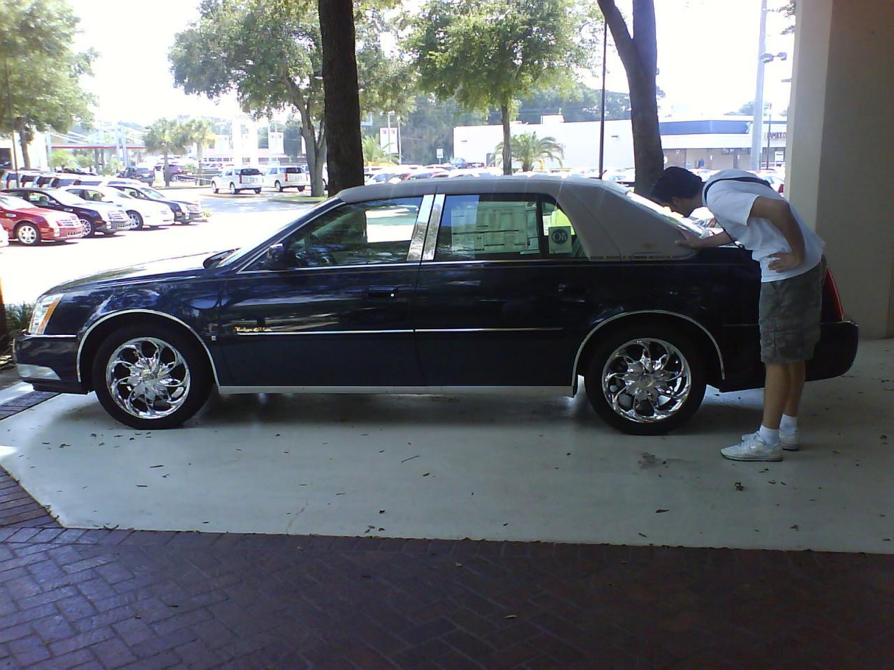 Concession Cadillac Tampa fl